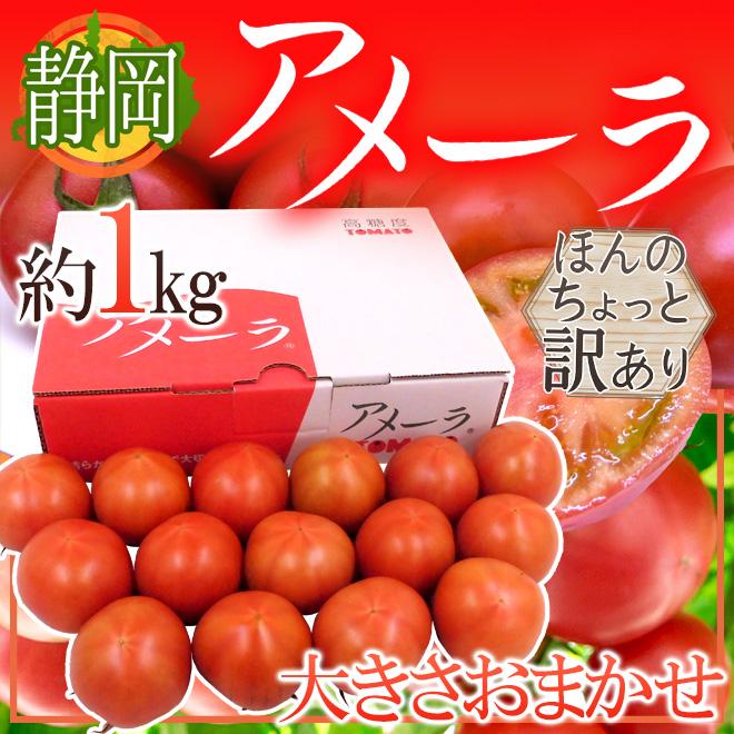 022-amella1kgw02 アメーラ1