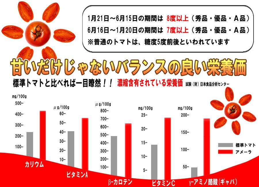 ame-set3w tomatoTOP