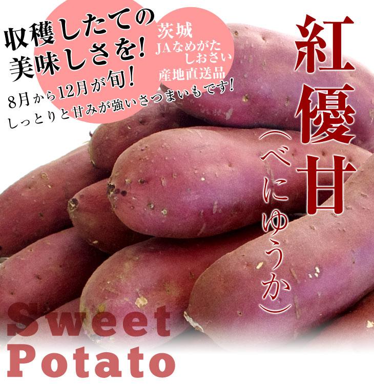 d_potato57_ph 薩4