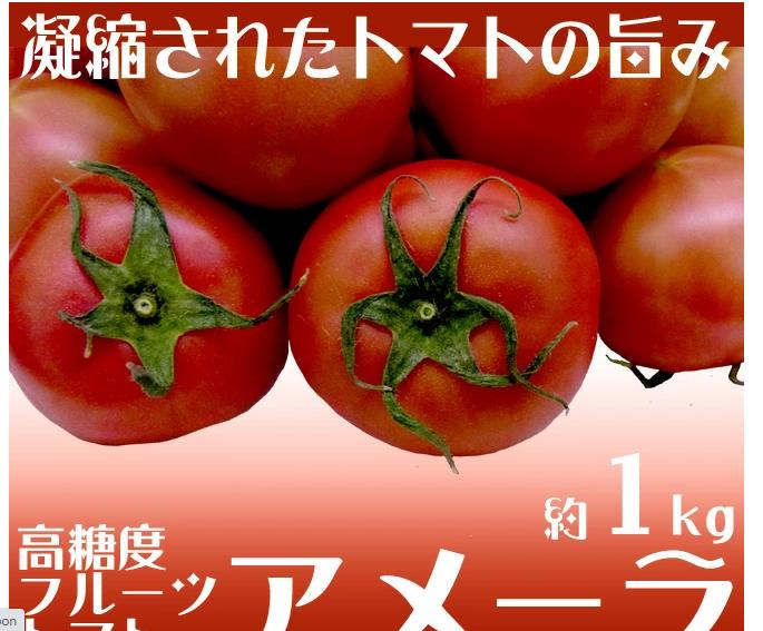 キャプチャ tomato3