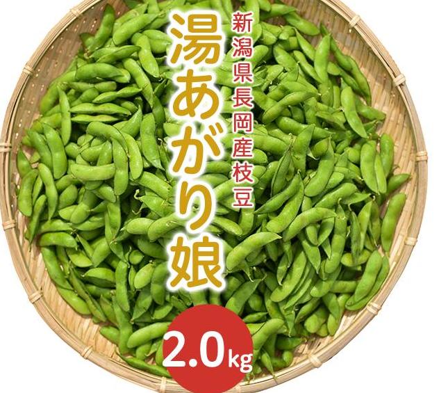 キャプチャ 枝豆3