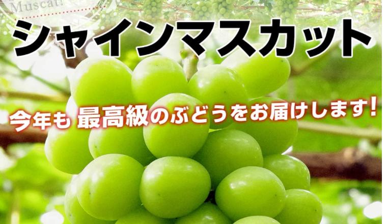 キャプチャ葡萄1