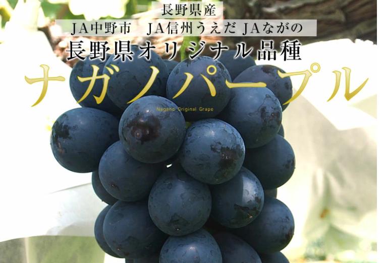 キャプチャ葡萄4