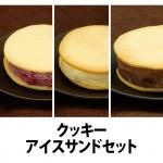 クッキーアイス1
