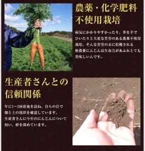 0111page_ninjin_04